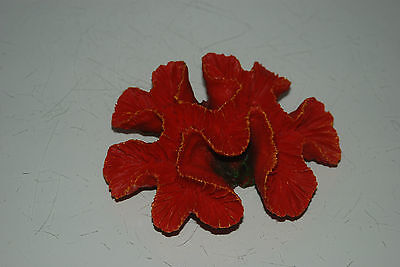 Detailed Aquarium Coral Reef Decoration Red Sponge Type 15 x 12 x 5 cms 6