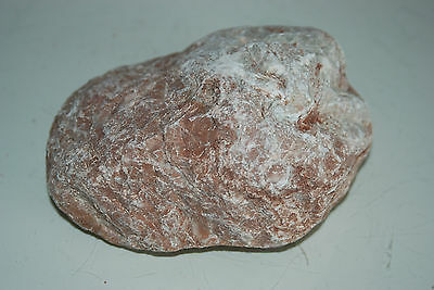 Natural Aquarium Stunning Tahiti Stone Suitable For All Aquariums 2 3