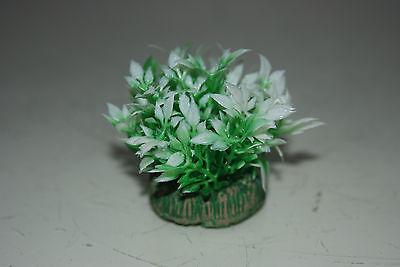 Aquarium Small Nano Plants x 2 Green & White approx 4 cms 4