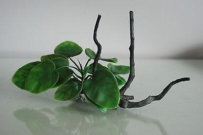 Aquarium Realistic Plastic Plant Attached to Wooden Log 24 x 11 x 13 cms 5