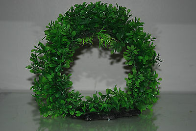 Aquarium Realistic Large Green Ring Plant 22 x 8 x 21 cms For All Aquariums 5
