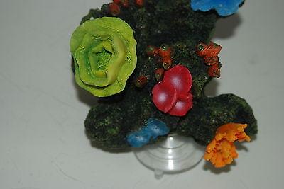 Aquarium Reef Decoration + Suckers For Attatching To Aquarium Glass 19 x 13x 12 3