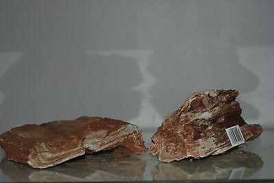 Natural Aquarium Redwood Lines Rock x 2 Pieces Suitable for Aquariums 4C 4