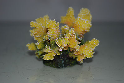 Detailed Aquarium Coral Reef Decoration Yellow Sponge Type 10 x 8 x 8 cms 3