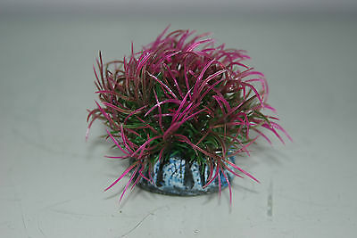 Aquarium Marine Reef Coloured Balls Orb Decoration 6 x 6 x 6 cms pack of 3 balls 3