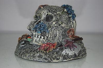 Aquarium Detailed Large Pirate Skull & Padlock and Axe 16.5 x 16 x 11.5 cms 3