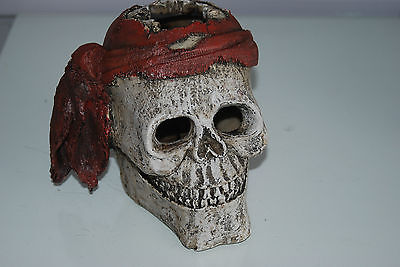 Aquarium Detailed Large Pirate Skull With Scarf  Decoration 19 x 19 x 16 cms 5