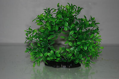 Aquarium 2 x Realistic Green Ring Plants 17 x 5 x 14 cms For All Aquariums 4