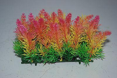 Aquarium Coloured Plant Mat 14 x 5 x 9 cms Suitable For All Aquariums 5