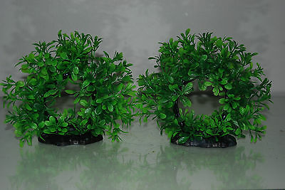 Aquarium 2 x Realistic Green Ring Plants 17 x 5 x 14 cms For All Aquariums 3
