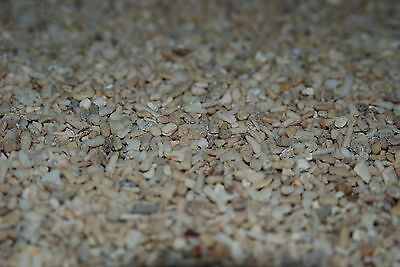 Aquarium Cichlid Coral Sand  25 Kilo Bag Sand Size Approx 3 mm for Aquariums 3
