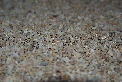 Aquarium Cichlid Coral Sand  25 Kilo Bag Sand Size Approx 5 mm for Aquariums 3