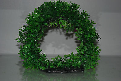 Aquarium Realistic Large Green Ring Plant 22 x 8 x 21 cms For All Aquariums 6