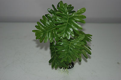 Aquarium Green Plant With Roots x 2 Pieces Approx 15 cms Tall 04F 5