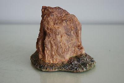 Detailed Vivarium Landscape Rock Suitable For All Vivariums 11 x 9  x 9 cms 8