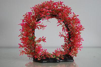 Aquarium Realistic Large Red Ring Plant 22 x 8 x 21 cms For All Aquariums 4