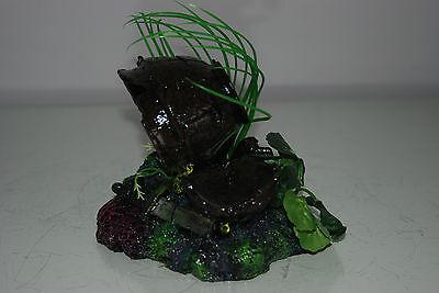 Aquarium Broken Sunken Pots Sword on Rock Base with Plants 15 x 11 x 12 cms 3