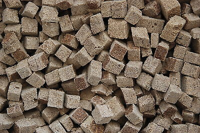 Freeze Dried Aquarium Tubifex Cubes Suitable For All Fish 366ml Tub Approx 30g 2