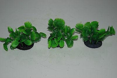 Aquarium 3 x Small Green Bush Plant 5x4x7 cms Ideal For The Front Of Aquarium 5