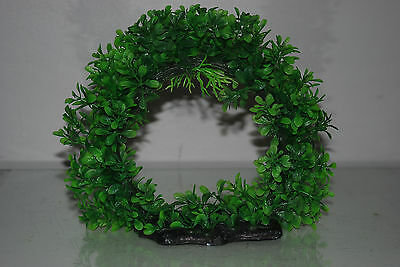 Aquarium Realistic Large Green Ring Plant 22 x 8 x 21 cms For All Aquariums 2