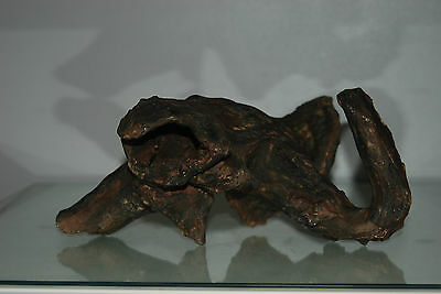 Stunning Aquarium Driftwood Root 28 x 16 x 17 cms Suitable For All Aquariums 6