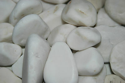 FMF Natural Aquarium White Pebbles Approx 2 kg Bags Fish and Reptile Use 2