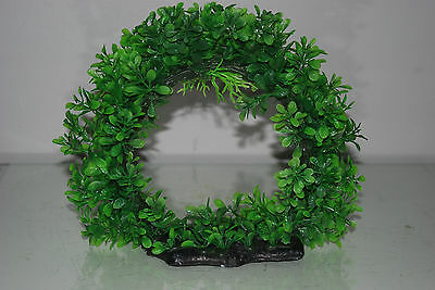 Aquarium Realistic Large Green Ring Plant 22 x 8 x 21 cms For All Aquariums 3