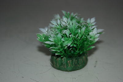 Aquarium Small Nano Plants x 2 Green & White approx 4 cms 3