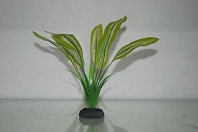 Aquarium Silk Plant Amazon Broad Leaf Pale Green 13 cms High 4
