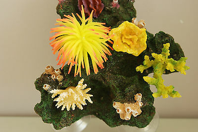 Aquarium Reef Decoration + Suckers For Attatching To Aquarium Glass 19x13x 21 3