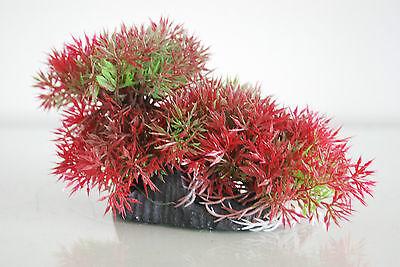 Aquarium Realistic Plastic Plant 18 x 6 x10 cms with Rock Base For All Aquariums 2