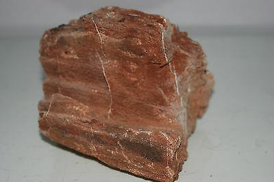 Natural Aquarium Redwood Lines Rock x 2 Pieces Suitable for Aquariums 4E 3