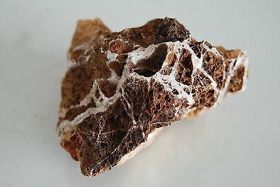 Natural Aquarium Maple Leaf Rock 3 Pieices Suitable For All Aquariums MRB1J 4
