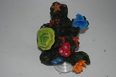 Aquarium Reef Decoration + Suckers For Attatching To Aquarium Glass 19 x 13x 12 2