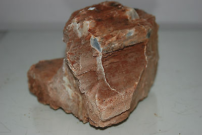 Natural Aquarium Redwood Lines Rock x 2 Pieces Suitable for Aquariums 4E 4