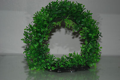 Aquarium Realistic Large Green Ring Plant 22 x 8 x 21 cms For All Aquariums 4