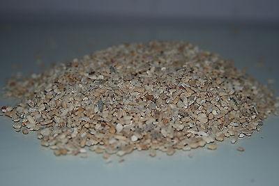 Aquarium Cichlid Coral Sand 3 Kilo Bag Size Approx 5 mm Suitable for Aquariums