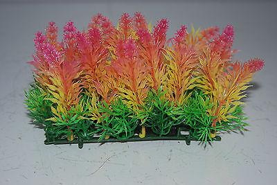 Aquarium Coloured Plant Mat 14 x 5 x 9 cms Suitable For All Aquariums 2