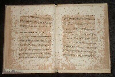 Das Hirn des Negers ,Original von 1837 , Friedrich Tiedemann 12