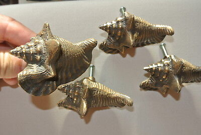 4 small SHELL FISH solid 100% BRASS knobs TROPICAL VINTAGE old style 75 mm B 3