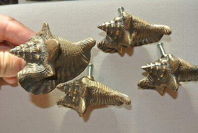 4 small SHELL FISH solid BRASS knobs TROPICAL VINTAGE old style 75 mm B 3