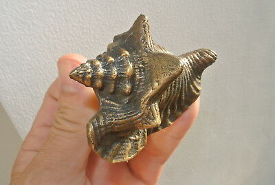 4 small SHELL FISH solid 100% BRASS knobs TROPICAL VINTAGE old style 75 mm B 7
