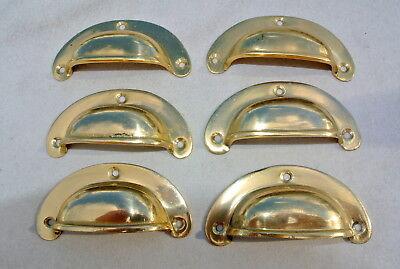 6 shell handles PULL polished Brass PULL knob kitchen cast 8 cm inc screws B 2