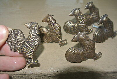 6 small CHICKEN knobs aged solid BRASS old vintage style natural 5 cm high B 3