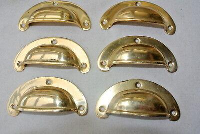 6 shell handles PULL polished Brass PULL knob kitchen cast 8 cm inc screws B 5