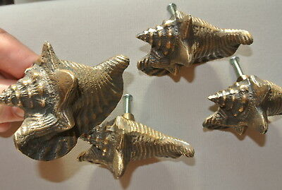4 small SHELL FISH solid 100% BRASS knobs TROPICAL VINTAGE old style 75 mm B 2