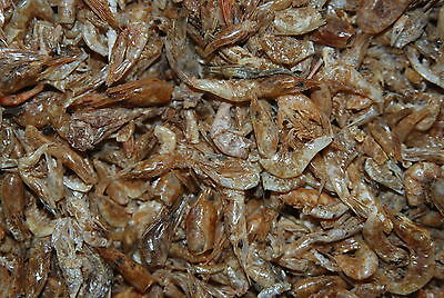 FMF Dried River Shrimp Suitable For Koi Pond Fish Birds & Reptile approx 800g 2