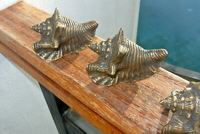 4 small SHELL FISH solid BRASS knobs TROPICAL VINTAGE old style 75 mm B 5