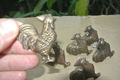 6 small CHICKEN knobs aged solid BRASS old vintage style natural 5 cm high B 2