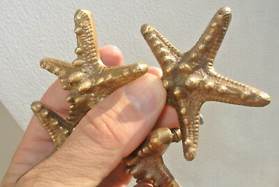 4 small STAR FISH solid BRASS knobs TROPICAL VINTAGE old style 70 mm B 9